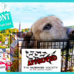 Update:  Vermont Gov Scott signs HSUS bill to cut puppy mill cage sizes