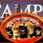 """""""Rabies roulette"""" in Tampa:  the odds favor TNR"""