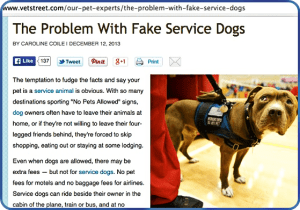Thesis statement on service dogs