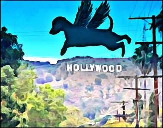 Hollywood flying dog