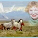 Hope Ryden, 87, revealed the lives of wild horses,  beaver,  & coyotes