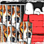 Covance beagle breeding kennels:  they are not Snoopy's doghouse