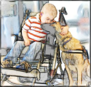 Boy in wheelchair & service dog
