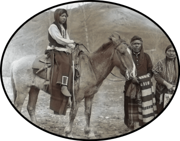 What Does The Omak Suicide Race Owe To A Horse Massacre