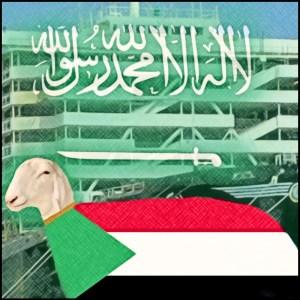 Sheep with Sudan Flag and Saudi Arabia flag symbols