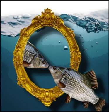 Fish & mirror