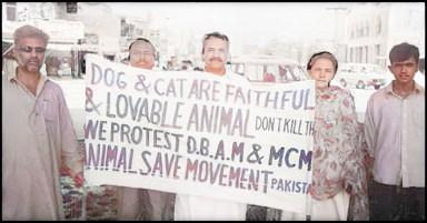 Animal Save Pakistan