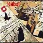 Animal evacuations from Kabul & New Orleans echo Saigon & Katrina