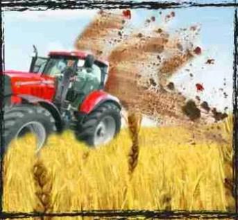 Farmer spreads manure on crop