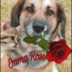 Warren Cox shelter dog Emma Rose