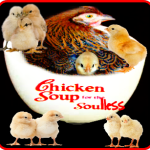 Kaporos:  chicken soup for the soulless?