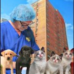Is the Veterinary Profession Serving All Companion Animal Medical Needs in America Today?