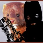 Why mink releases don't stop fur farm cruelty