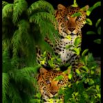 Over-counting jaguars, over-estimating poaching
