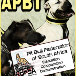 Pit Bull Federation of South Africa rips rescuer denial of what a pit bull is