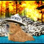 Could beavers have saved Paradise?