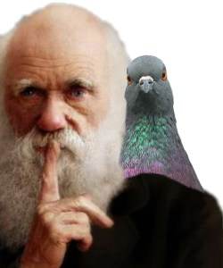 Charles Darwin & friend.