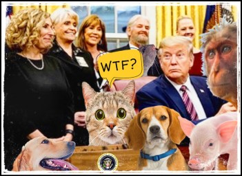 Kitty Block, Donald Trump