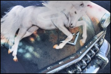 Desoto car with a white horse