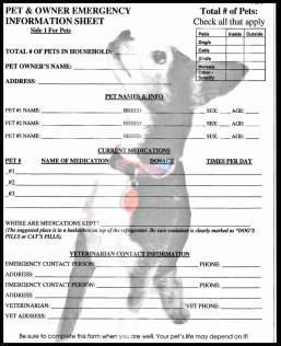 Pet Emergency Info Sheet created by Hazel Mortensen