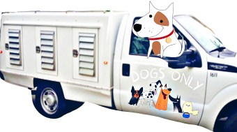 Animal Control truck with dogs