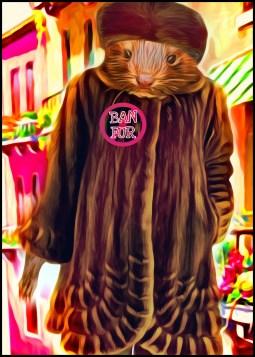 Ban fur