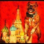 "Russia bans ""dogs of dangerous breeds"" under new humane law"
