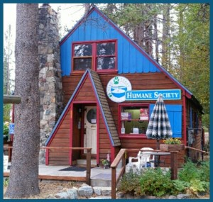 The Lake Tahoe Humane Society, one of the smallest shelters in California & perhaps among those least affected by the Hayden Act. (Beth Clifton photo)