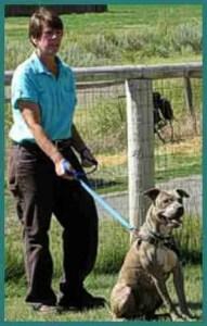 Kelley Bollen (Animal Alliances, LLC)
