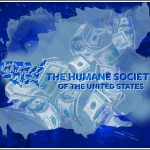 Strong allegations & strange strategy in lawsuit vs. HSUS execs & Pacelle