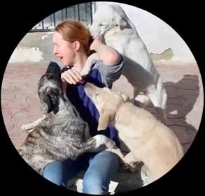 Charlotte Maxwell-Jones with Kabul dogs
