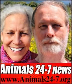 Beth and Merritt Clifton Animals 24-7