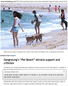 "Pampered South Korean pet dogs frolic at the nation's first ""dog beach."""