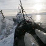 Whalers claim a victory,  but Sea Shepherds get the refund