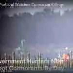 Cormorant massacre underway