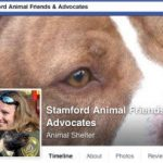 Stamford shelter manager is first in U.S. to be charged with reckless endangerment for rehoming dangerous dogs