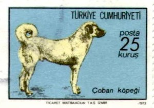 Another Turkish postage stamp.