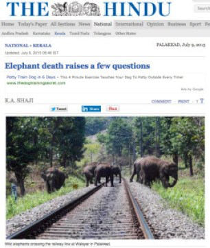 The Hindu on eles