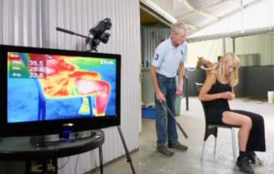 Jonica Newby, veterinarian turned ABCTVCatalyst broadcaster, takes blows from horsewhip, the impact of which is shown via thermal imaging.