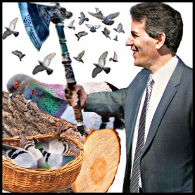 Wayne Pacelle killing pigeons