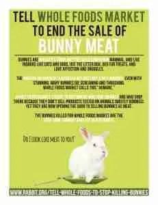 (House Rabbit Society poster)