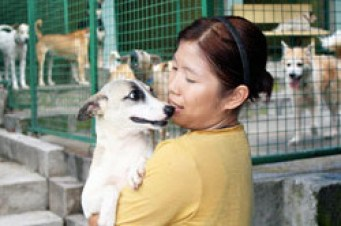 Volunteer with dogs rescued by the Philippine Animal Welfare Society. (PAWS photo)