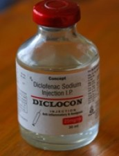 Diclofenac bottle. (www.savevultures.org)