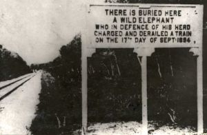 This sign commemorated the first elephant/train collision along the Teluk-Anson line in Malaysia. The route opened in 1893; the collision came on September 17, 1894.