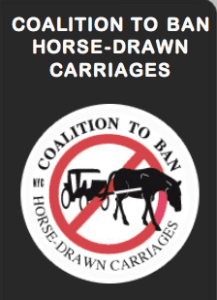 The Coalition to Ban Horse-Drawn Carriages, a much older organization than NYCLASS, has not been involved in the fundraising issues associated with NYCLASS and NYC mayor Bill de Blasio.
