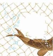 Fish escapes net