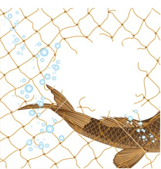 Fish escapes net