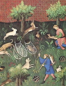 Rabbit hunting with a ferret and hounds,  illustrated by Gaston Pheobus, the Count of Foix and Viscount of Bearn,  circa 1387-1391.