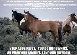 Protect Mustangs meme against PZP use.