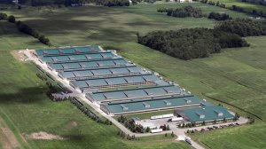 "Cornucopia Institute aerial photo of a purported ""free range"" egg farm."